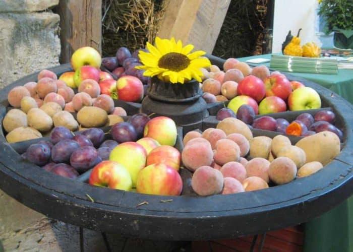 Leckeres auf dem Apfelprobiertag